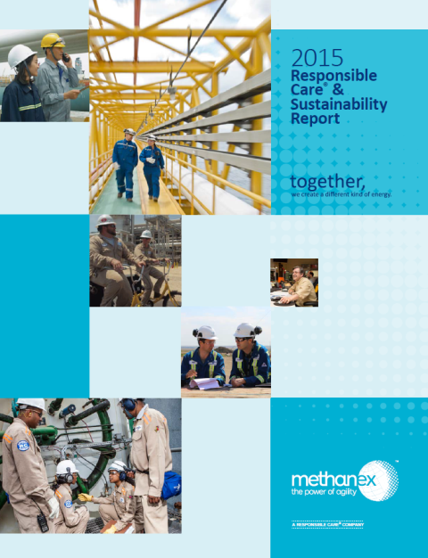 2015 Report cover